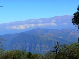 Paysage de Yungas depuis San Fransico